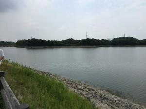 近くには大きな池があってとても静かです。