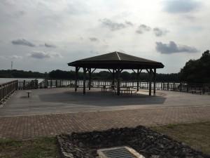 池野周りは散歩コースになっているようです。